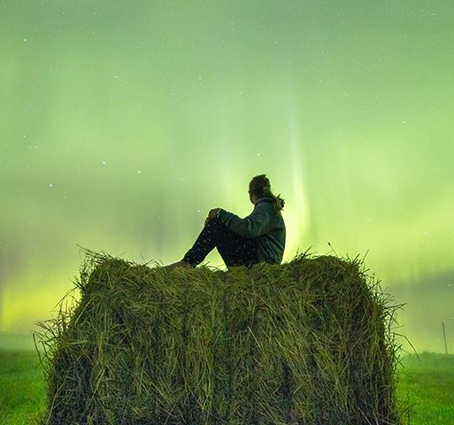 Person sitting on top of hay looking at the norther lights